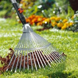 Догляд за газоном восени: поради та рекомендації