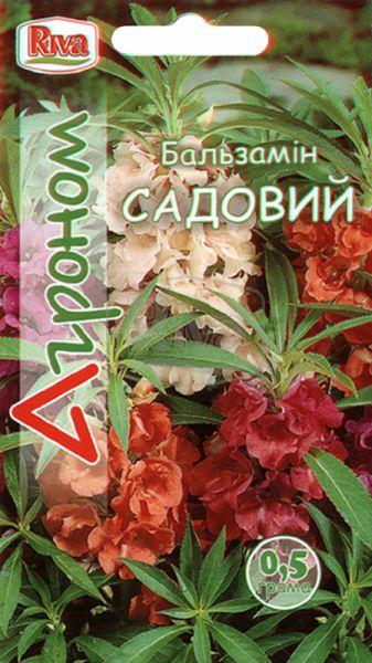 Бальзамін садовий