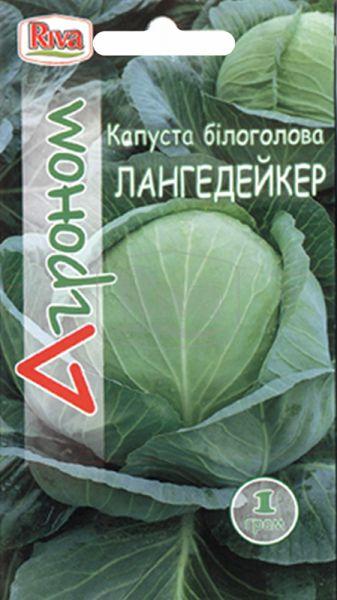 Капуста білоголова Лангедейкер