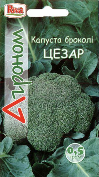 Капуста броколі Цезар