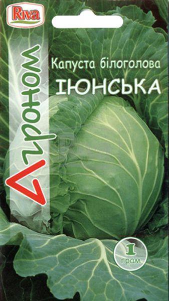 Капуста білоголова Іюнська