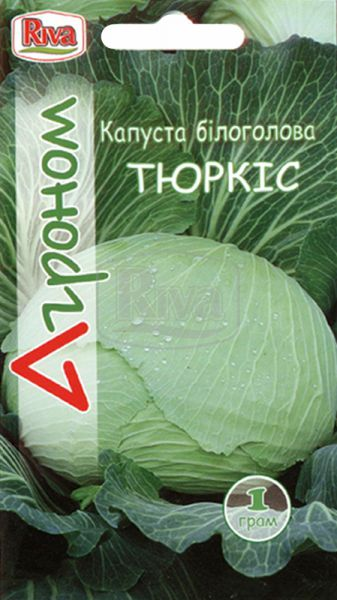 Капуста білоголова Тюркіс