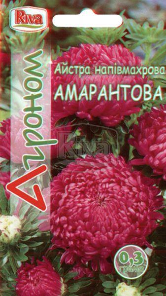 Айстра напівмахрова амарантова