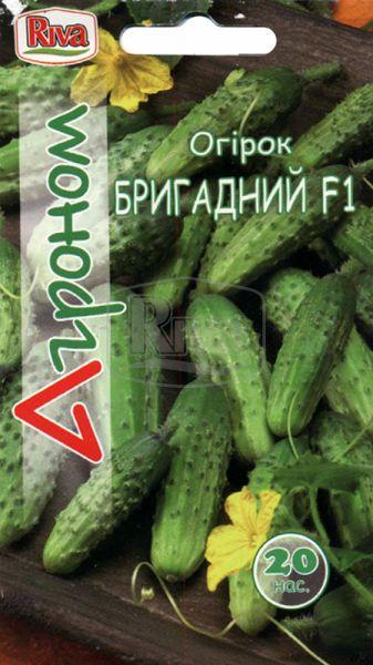 Огірок Бригадний