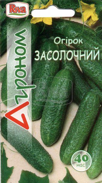 Огірок Засолочний