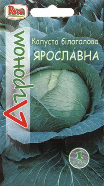 Капуста білоголова Ярославна