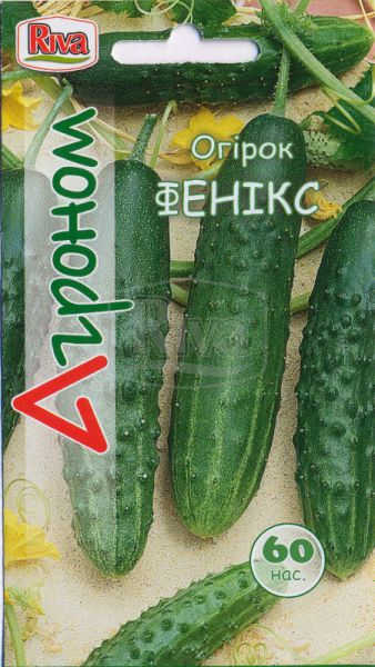 Огірок Фенікс