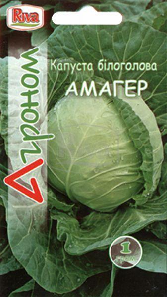 Капуста білоголова Амагер