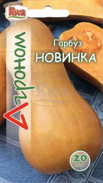 Гарбуз Новинка