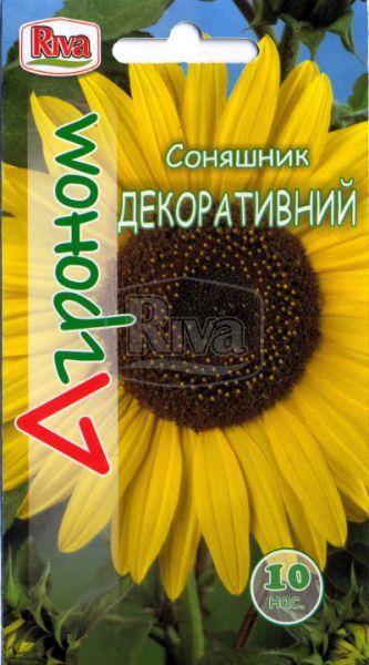 Соняшник декоративний низький