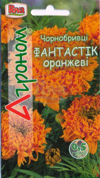 Чорнобривці Фантастік Оранжеві