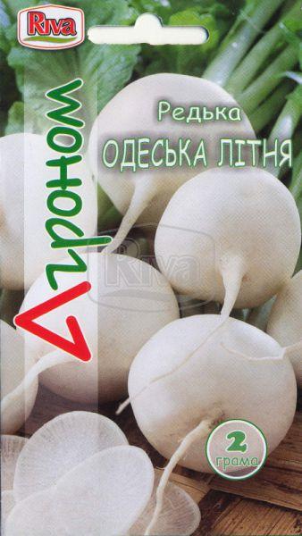 Редька Одеська літня
