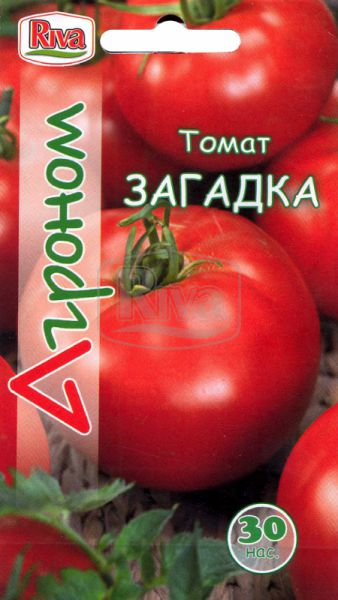 Томат Загадка