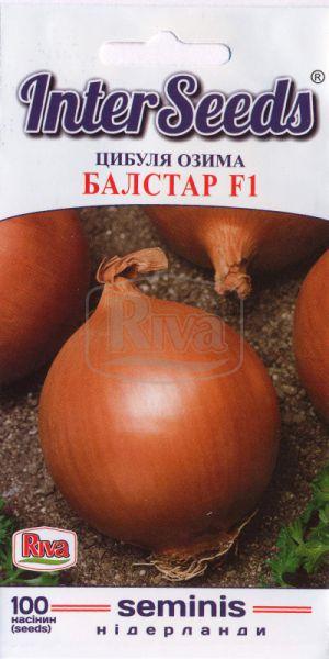 Цибуля озима Балстар F1