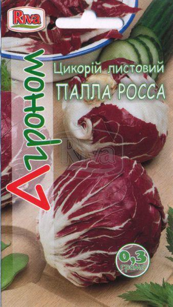 Цикорій Палла Росса